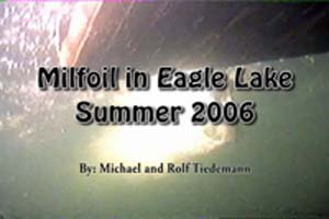 Milfoil in Eagle Lake